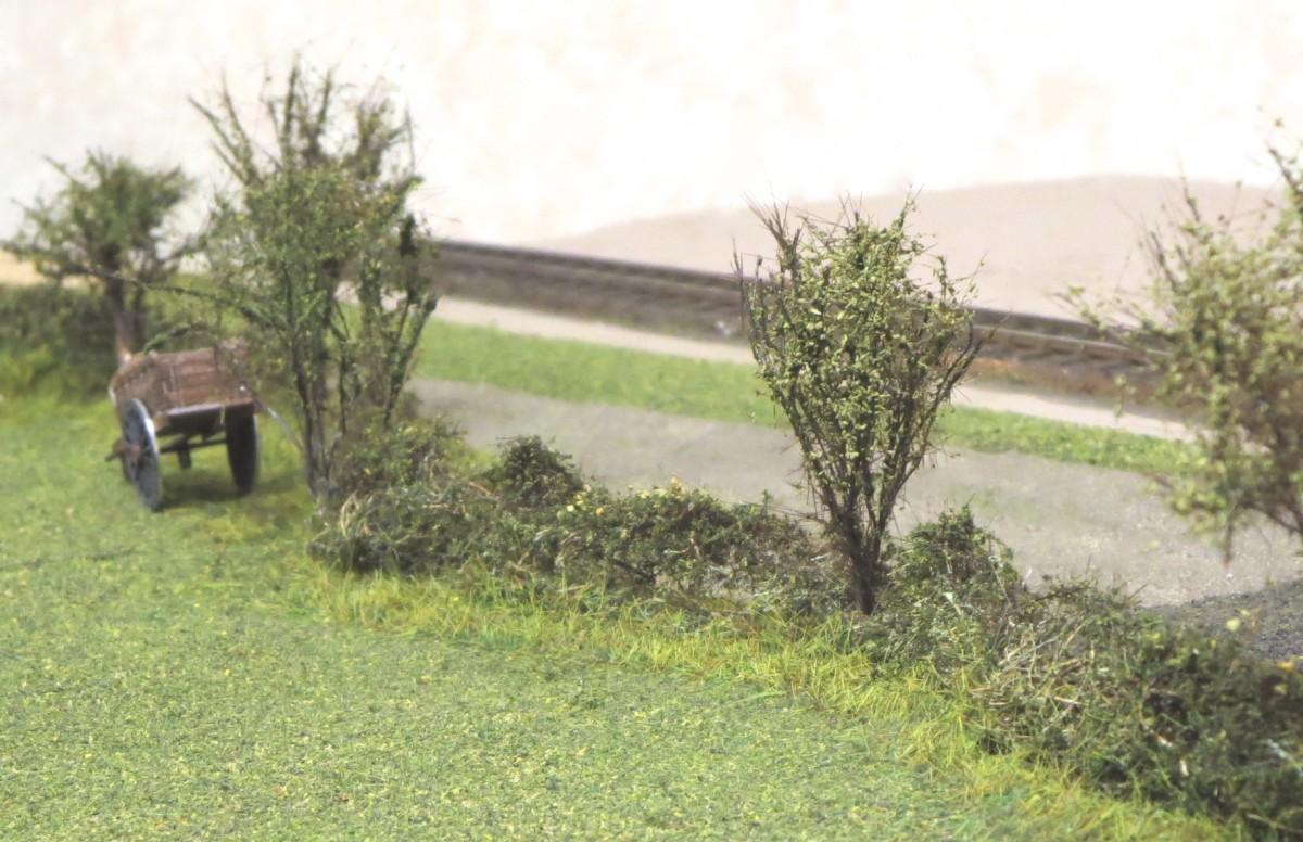 john hedge 1