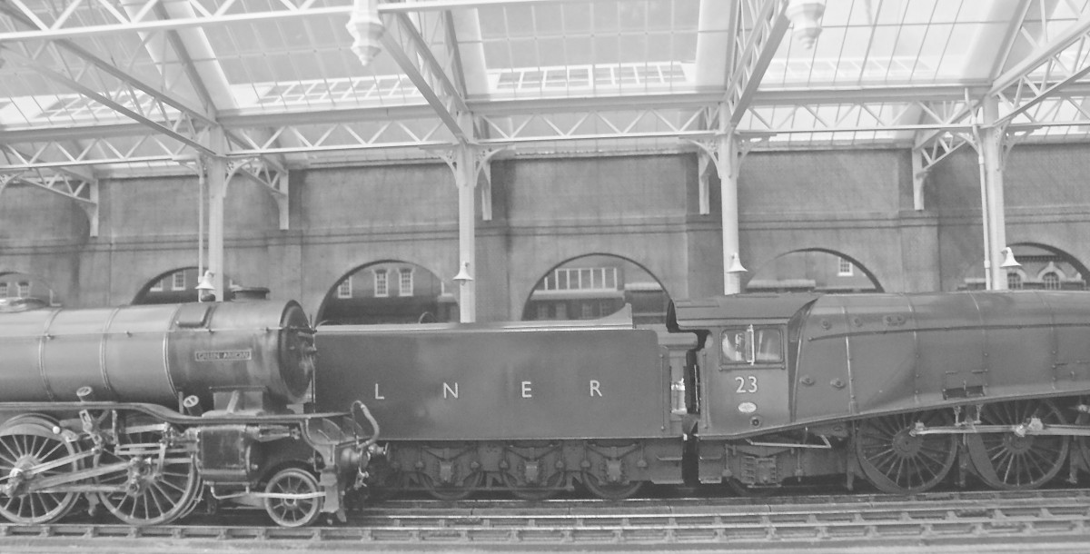 A pair of 1930s locomotives rest alongside one another beneath the glazed canopy